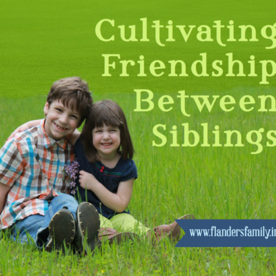 Helping Siblings become Friends
