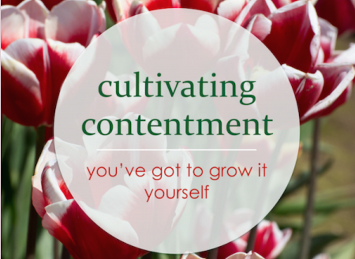 Cultivating Contentment