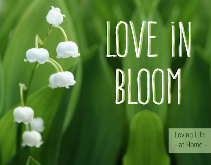 Love in Bloom - Are you willing to put in the work to really make your marriage blossom?
