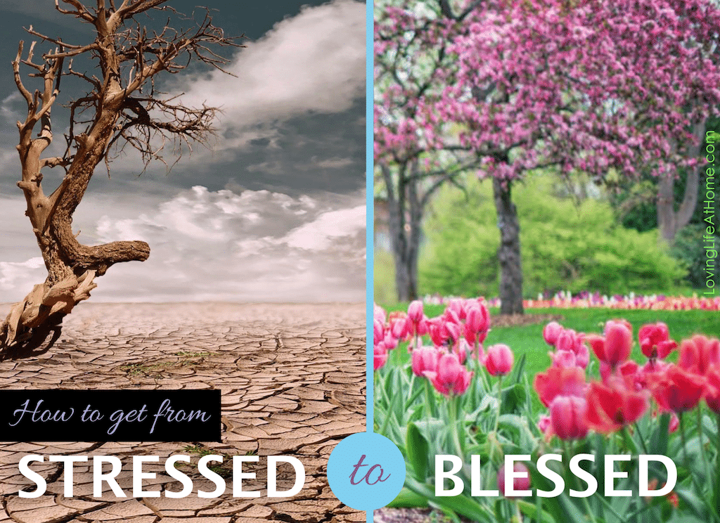 How to get from stressed to blessed | lovinglifeathome.com