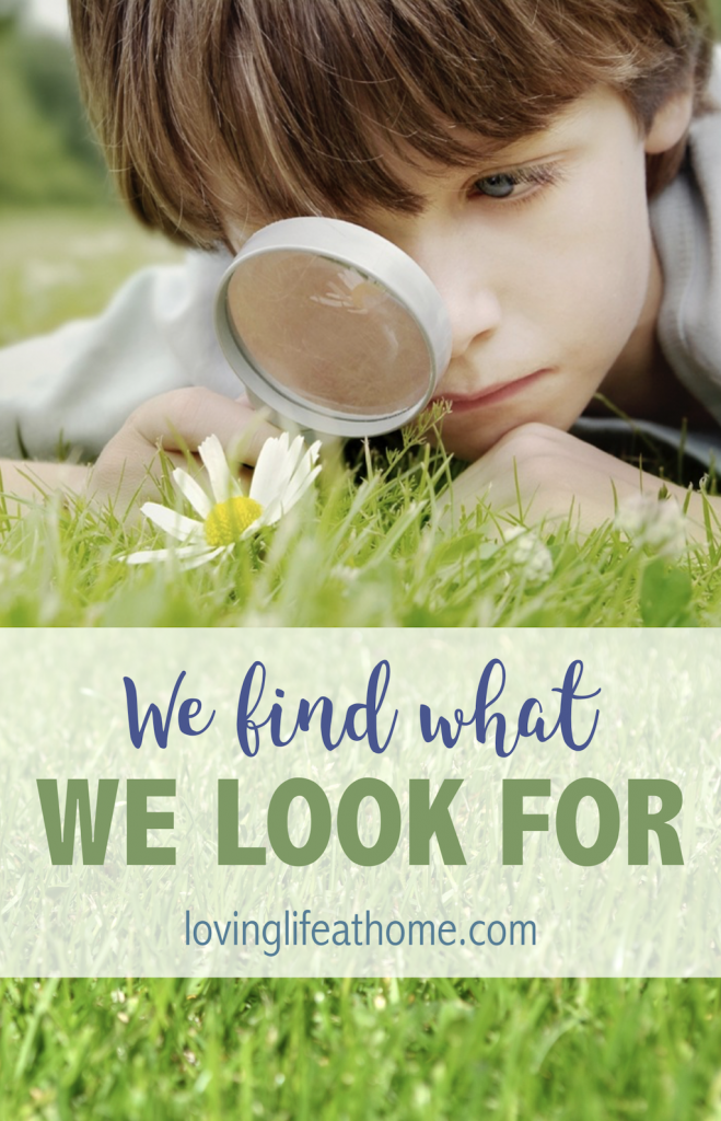 We Find What We Look For